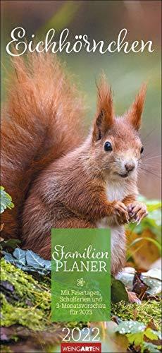 Eichhörnchen Familienplaner 2022 - Wandkalender mit Monatskalendarium, 5 Spalten, Schulferien, 2 Stundenpläne, 3-Monats-Ausblick Januar bis März 2023 - 22 x 48 cm