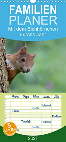 Mit dem Eichhörnchen durchs Jahr - Familienplaner hoch (Wandkalender 2021 , 21 cm x 45 cm, hoch): Eichhörnchen, über das ganze Jahr beobachtet und ... (Monatskalender, 14 Seiten ) (CALVENDO Tiere)