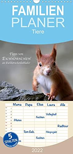 Tipps von Eichhörnchen an Eichhörnchenliebhaber (Wandkalender 2022, 21 cm x 45 cm, hoch)