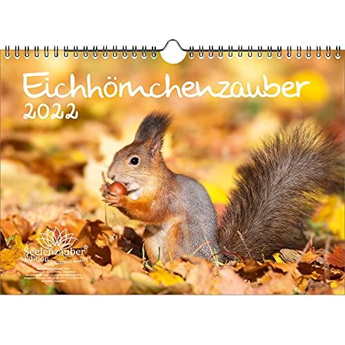 Eichhörnchenzauber DIN A4 Kalender für 2022 Eichhörnchen - Seelenzauber