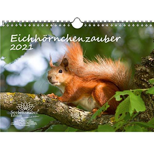 Eichhörnchenzauber DIN A4 Kalender für 2021 Eichhörnchen - Seelenzauber